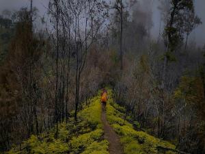 misteri gunung argopuro di bondowoso