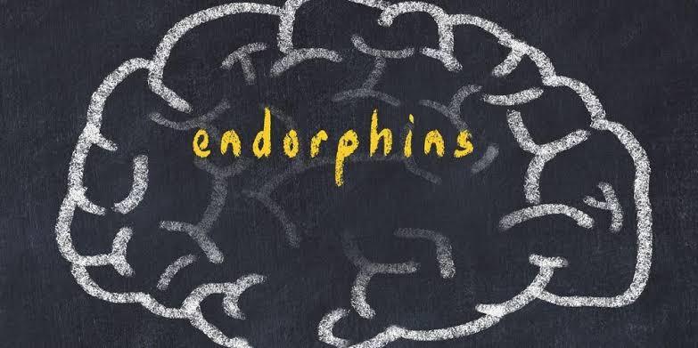 Hormon endorfin penghilang stres